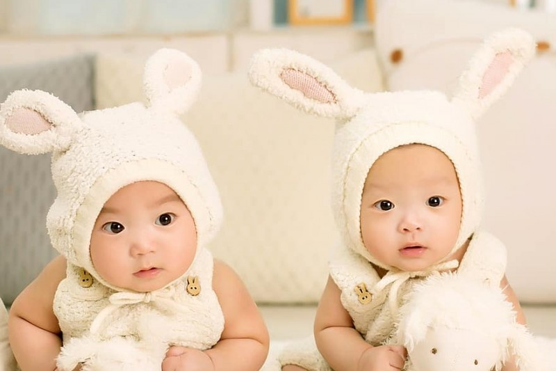 Not all twins are identical, and that's been an evolutionary puzzle until now